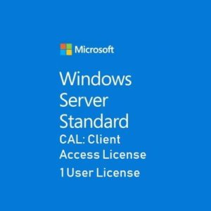 Microsoft Server Standard CAL 1 User