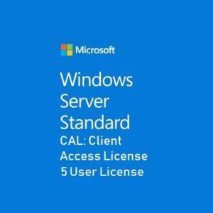 Microsoft Server Standard CAL 5 User